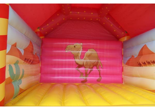 Kamel Hüpfburg kaufen
